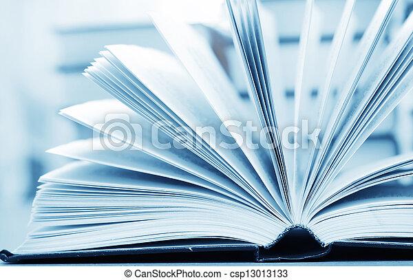 open book - csp13013133