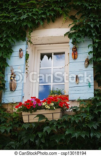 Window with flowers - csp13018194
