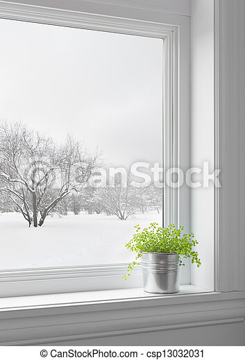 Green plant and winter landscape seen through the window - csp13032031