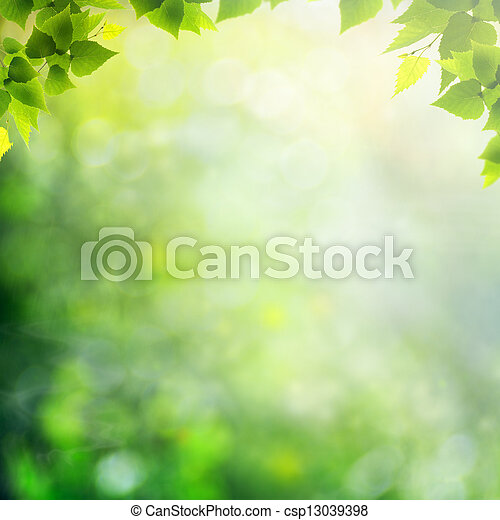 Beauty sunny day in the forest, abstract natural backgrounds - csp13039398