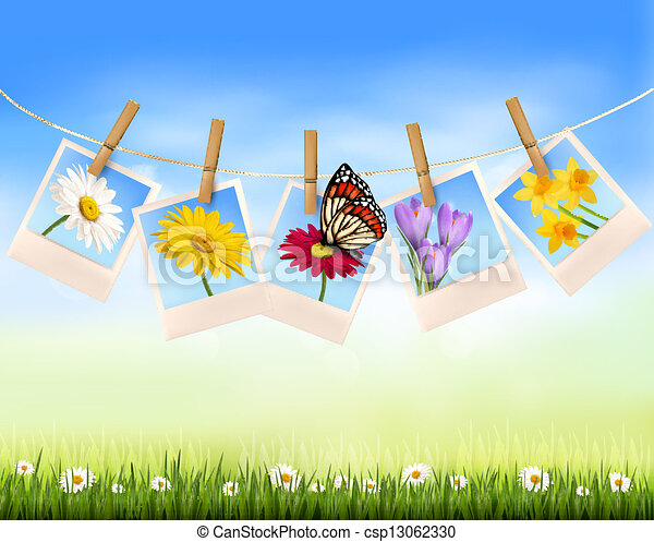 Nature background with photo with flowers and butterfly. Vector illustration. - csp13062330