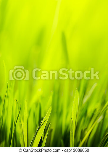 abstract spring nature green background - csp13089050