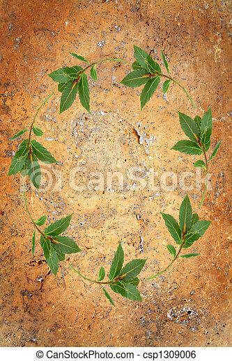 Bay Leaf Garland - csp1309006