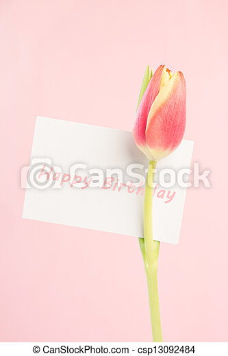 Close up of a beautiful tulip with a happy birthday card