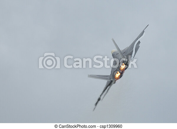 F-22 Raptor  turning - csp1309960