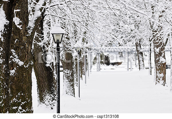 Lane in winter park - csp1313108
