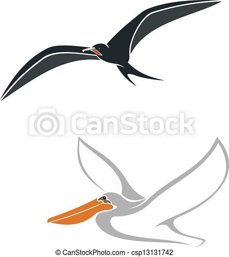 comment dessiner un albatros