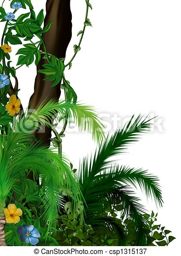 Jungle vegetation - csp1315137