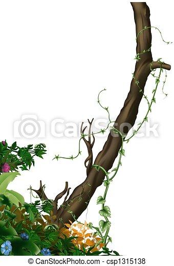Jungle vegetation - csp1315138