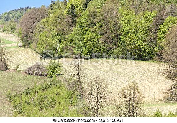 Agriculture in Poland. - csp13156951