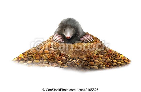 Moles Illustrations and Clipart. 728 Moles royalty free ...