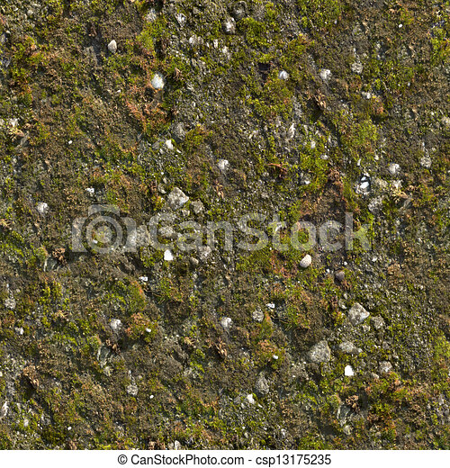 Mossy Wall Seamless Texture. - csp13175235