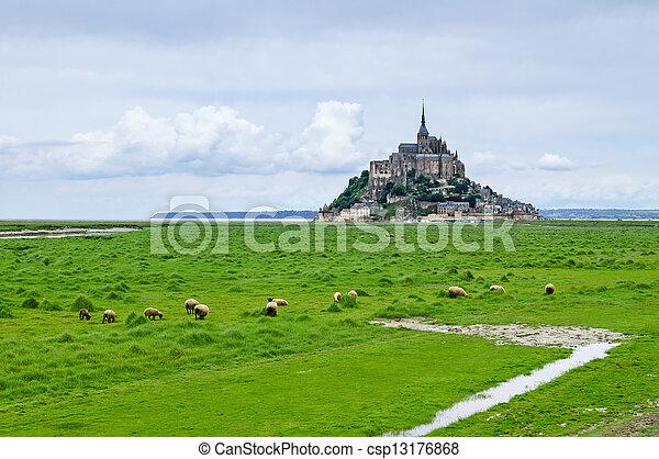 Sheeps grazing near Mont Saint Michel landmark. Normandy, France, Europe. - csp13176868