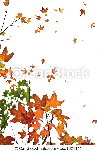 Fall maple leaves background - csp1321111