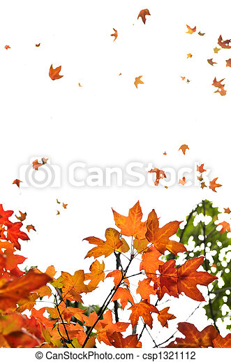 Fall maple leaves background - csp1321112