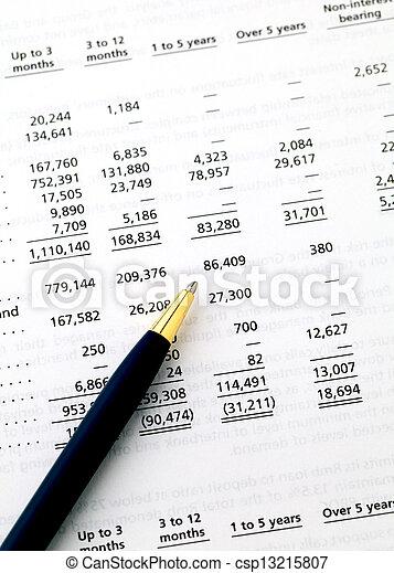 accounting financial data - csp13215807