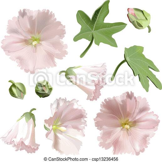 witte achtergrond tekening bloemen - photo #21