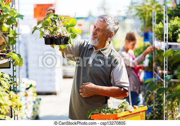 photographies de usines jardinage centre fraise personne agee achat csp13270805. Black Bedroom Furniture Sets. Home Design Ideas
