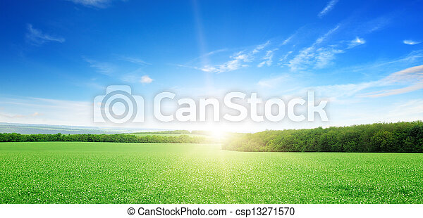 sunrise over a green field - csp13271570