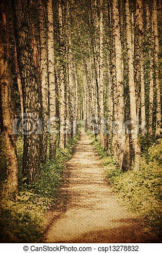Grunge rural road - csp13278832