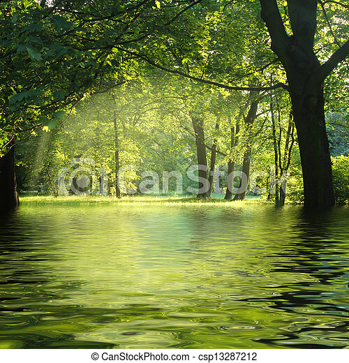 sunbeam in green forest with water - csp13287212