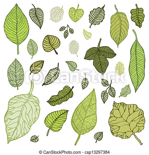 Green leaves set.  Vector Illustration. - csp13297384