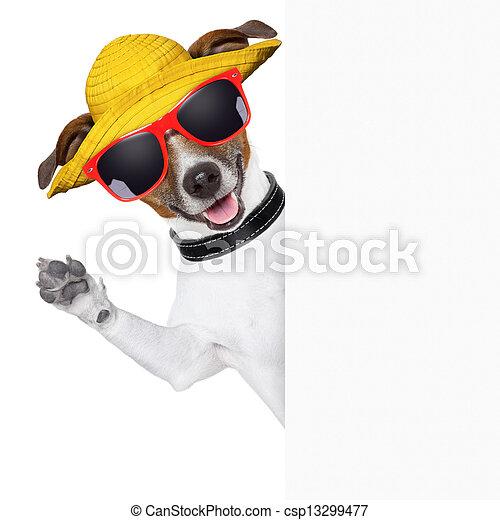 summer dog banner - csp13299477