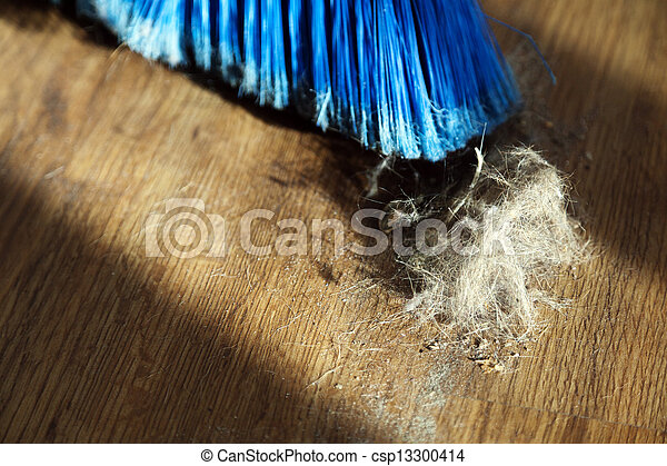 Broom, Dust & Fur Ball on Parquet Floor