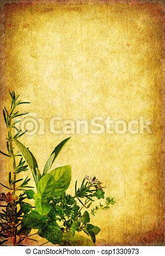 Grunge Herb Background - csp1330973