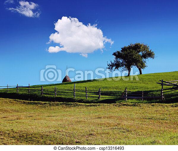 Rural Landscape - csp13316493