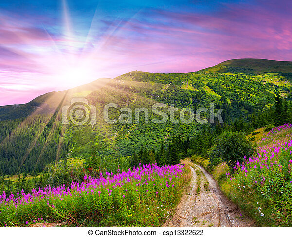 Beautiful summer landscape in the mountains with pink flowers. Sunrise - csp13322622