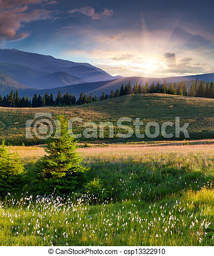 Beautiful summer landscape in the  mountains with a feather grass - csp13322910
