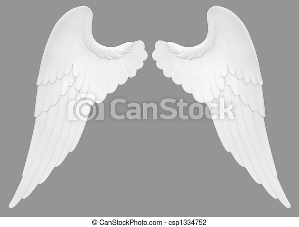 Angel Wings - csp1334752