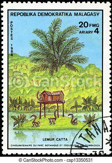 REPULLICA MALAGASY - CIRCA 1988: A stamp printed in Malagasy (Madagascar) shows Ring-tailed Lemur - Lemur Catta, circa 1988 - csp13350531