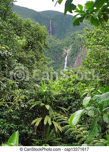 caribbean waterfall - csp13371617