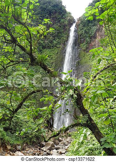 caribbean waterfall - csp13371622