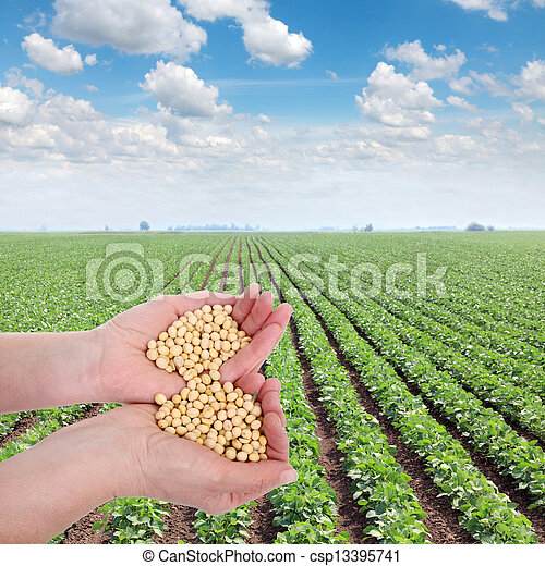 landwirtschaft - csp13395741
