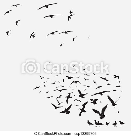 Vector Clipart of pack of seagulls and swallows - pack of seagulls ...