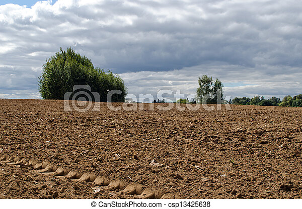 plowed agriculture field trees growing soil  - csp13425638