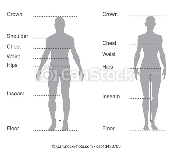 size chart, measurement diagram of male and female body measurements for clothing - csp13433785