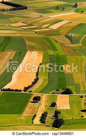 Green fields aerial view before harvest at summer - csp13446651