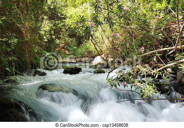 Banias Waterfall - csp13458638