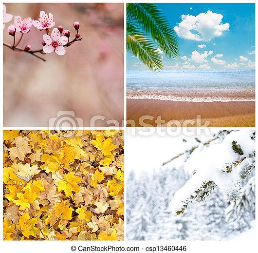 Four season conceptual collage