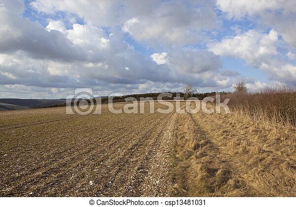 english agriculture - csp13481031