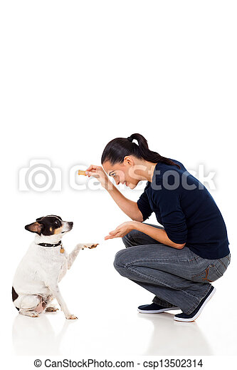 young woman training her dog - csp13502314