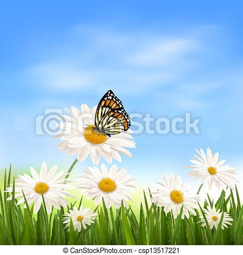 Nature background with green grass and butterfly - csp13517221