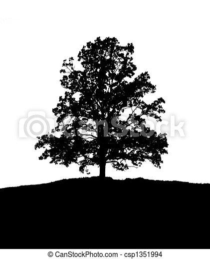 dessin de noir blanc arbre une illustration de a solitaire csp1351994 recherchez. Black Bedroom Furniture Sets. Home Design Ideas