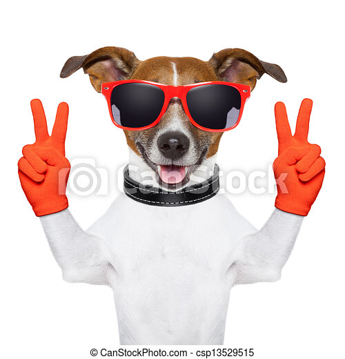 peace and victory fingers dog - csp13529515