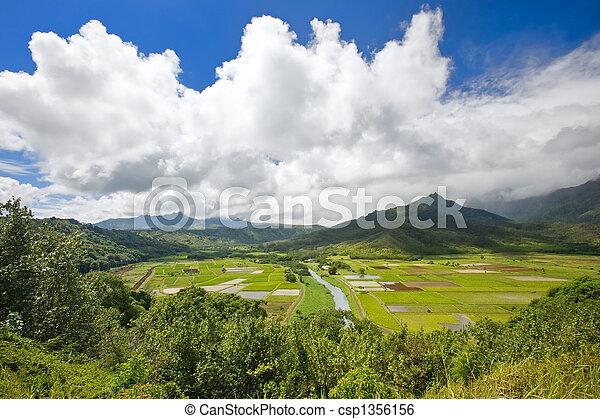 Fertile Valley - csp1356156
