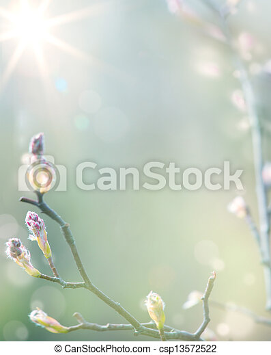 art Beautiful spring blossoming tree on sky background - csp13572522